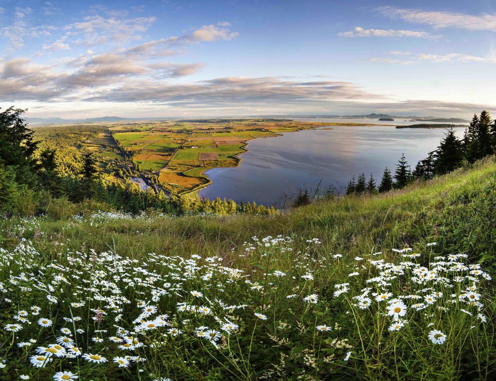 Samish Bay and Skagit Valley