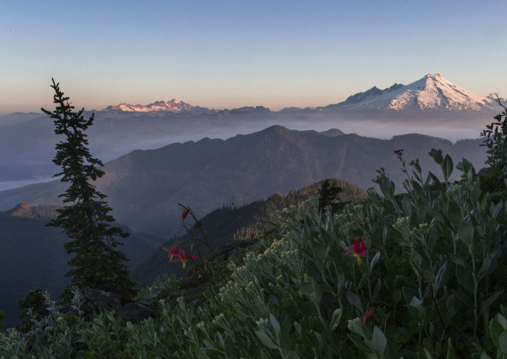 Mount Baker from Sauk Mountain